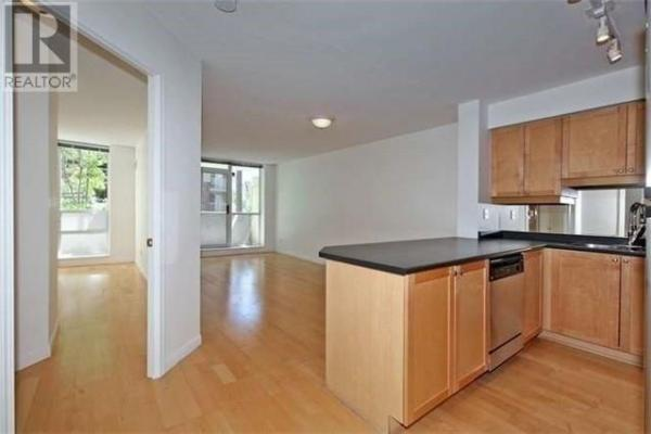 #203 -18 Stafford St  Toronto for rent
