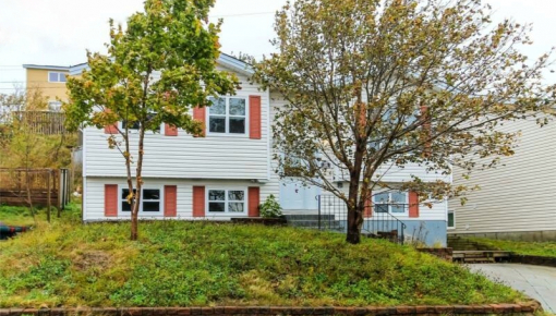 36a Alice Drive St. John's for rent